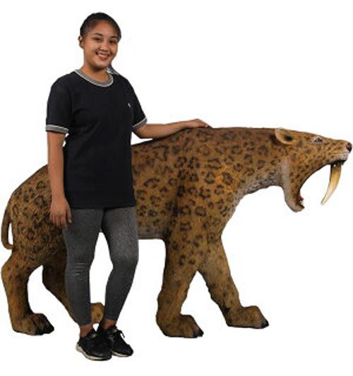 全長175cm!牙が鋭いサーベルタイガー フィギュア!  獰猛なサーベルタイガー 等身大フィギュア(恐竜等身大フィギュア)