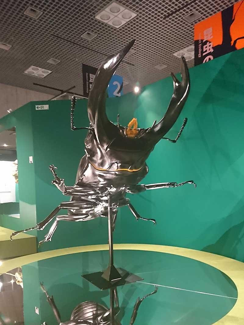 全長3m 巨大な「クワガタムシ」ビックリ!  アニマルビッグフィギュアシリーズ【昆虫 ビックサイズ オオクワガタ】(等身大フィギュア)