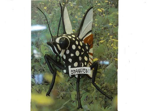 アニマルビッグフィギュアシリーズ【ビックサイズ パネル型 昆虫 マサギマダラチョウ(蝶)】(等身大フィギュア)