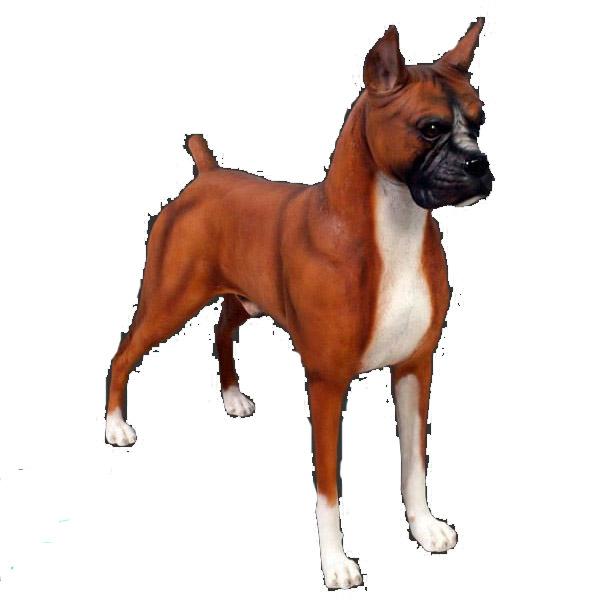 アニマルビッグフィギュアシリーズ【ボクサー犬】(等身大フィギュア)