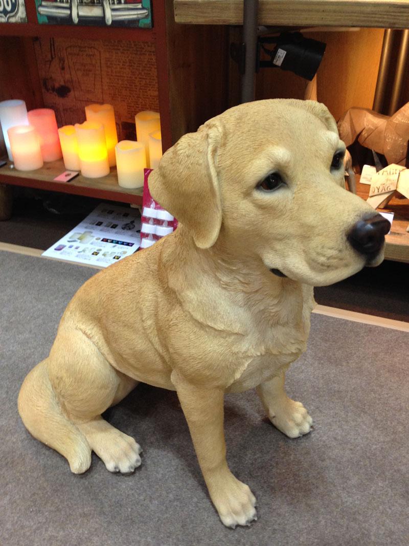 アニマルビッグフィギュアシリーズ【温和な ラブラドール レトリバー犬白】小(等身大フィギュア)