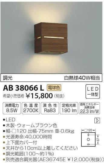 [マラソン中エントリーでポイント10倍]コイズミ照明 AB38066L ブラケット 一般形 自動点灯無し LED