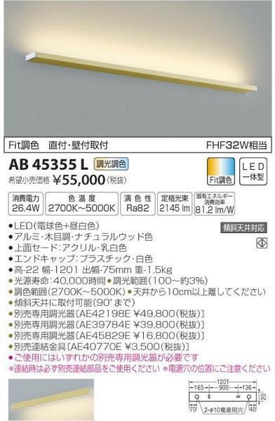 [マラソン中エントリーでポイント10倍]コイズミ照明 AB45355L ブラケット 一般形 自動点灯無し LED
