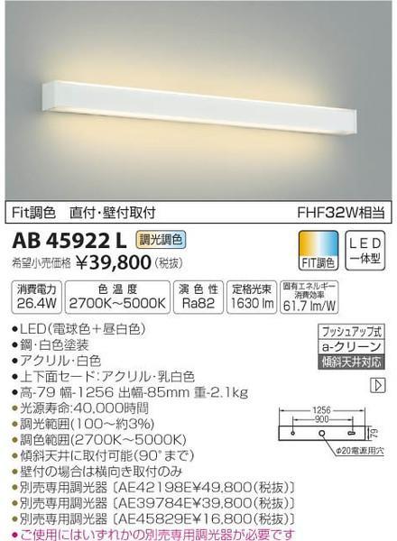 [マラソン中エントリーでポイント10倍]コイズミ照明 AB45922L ブラケット 一般形 自動点灯無し LED