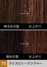 日本欧莱雅株式会社feria 3D彩色系列欧莱雅巴黎3D彩色#75 kurisupiijinja