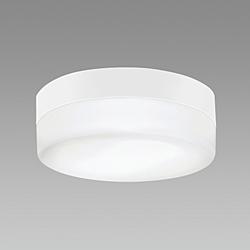 NEC(エヌイーシー) LED浴室灯防雨防湿形  [昼白色 /LED /防雨・防湿型] SXMLE262738N