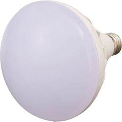 トラスコ中山 LED投光器用 20W LED球 RTL20W RTL20W