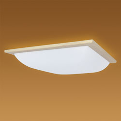 NEC(エヌイーシー) LEDシーリングライト  HLDZ08236 [8畳 /昼光色 /リモコン付き] HLDZ08236