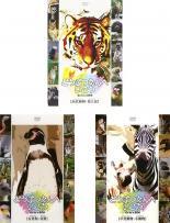 中古 ●日本正規品● DVD どうぶつえんへいこう 3枚セット 肉食動物 類人猿 全3巻 有袋類 小動物 2020秋冬新作 鳥類 草食動物