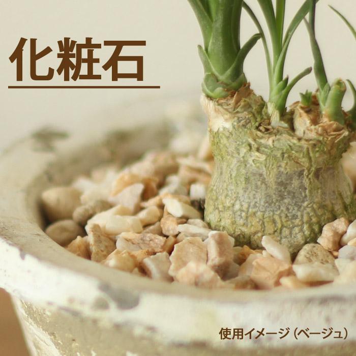 どんな植物 どんな鉢でも似合うマルチング飾り石 卸直営 小袋350g ナチュラル化粧石 お金を節約