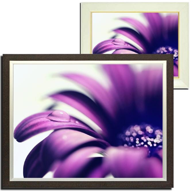 壁掛けアート アートパネル 風景画 ファブリックパネル ウォールアート キャンバスアート 観葉植物を置く感覚で 気軽にどこでも何枚でも飾れる花のファブリックパネル フォトグラファー y2-hiro 写真 キャンバスジグレー版画 人気 植物 母の日 海外並行輸入正規品 水滴 自然 マクロ インテリア雑貨 額縁付き ギフト 花 紫の花