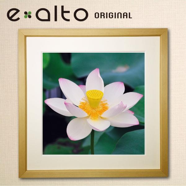 壁掛けアート 額縁付アートパネル 美しい蓮/ハスの風景画/y2-hiro ジクレープリント額縁付き