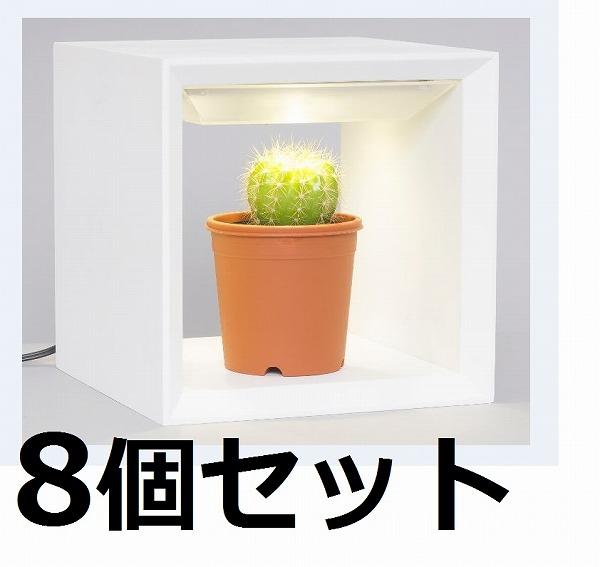 【8個セット】 MAI09-WH オリンピア照明 家庭用水耕栽培器 灯菜 Akarina 木ューブ(キューブ) ホワイト