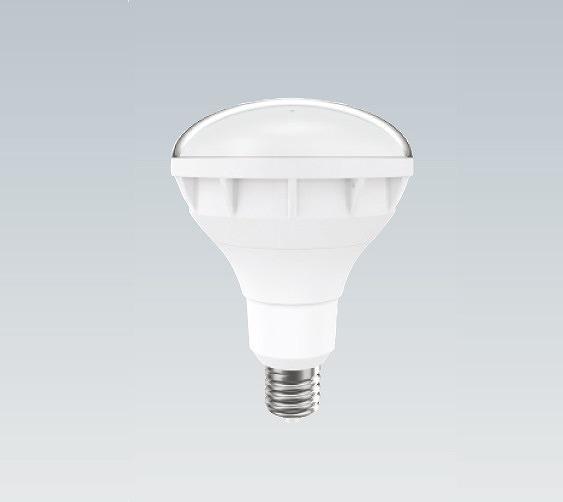 ライト 照明器具 別倉庫からの配送 天井照明 キッチンライト ベースライト オプション 施設用照明器具 遠藤照明 300W形 日本全国 送料無料 レフ型バラストレス水銀灯タイプ 白色 RAD590W LEDランプ