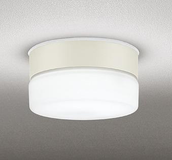 OG254769ND オーデリック 軒下用シーリングライト LED(昼白色)