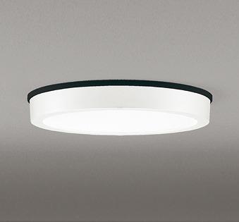 OG254807 オーデリック 軒下用シーリングライト LED(昼白色)