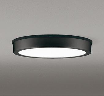OG254809 オーデリック 軒下用シーリングライト LED(昼白色)