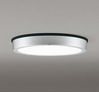 OG254811 オーデリック 軒下用シーリングライト LED(昼白色)