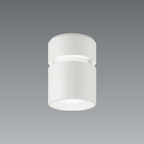 ERG5531W 遠藤照明 シーリングライト LED(白色)