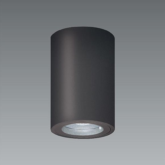 ERG5535H 遠藤照明 軒下用シーリングライト グレー LED(白色)