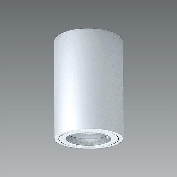 ERG5538S 遠藤照明 軒下用シーリングライト シルバー LED(電球色)