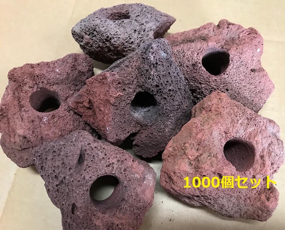 【1個=91円!】 【1000個+100個】赤い溶岩石 (穴あき)溶岩でできたフラワーポット(溶岩鉢)【もう1個サービス中!】※形状お任せになります。