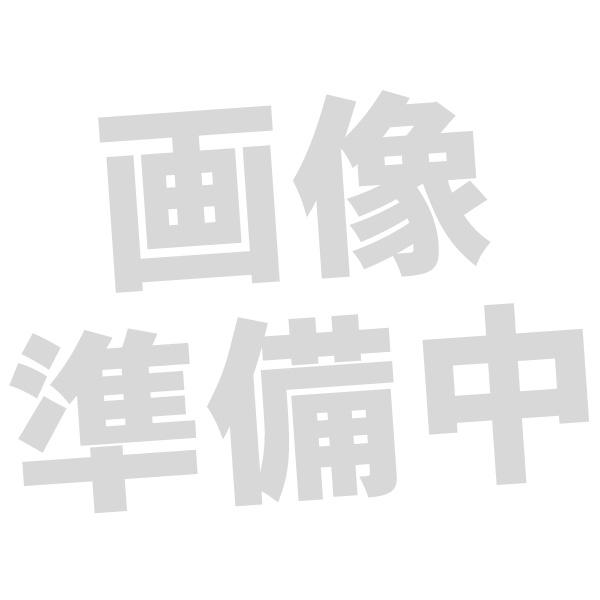 Cayin N6ii用オーディオマザーボード Cayin カイン A01オーディオマザーボード AK 4497EQ DAC搭載【1年保証】