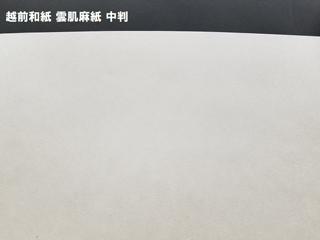 雲肌麻紙 ドーサ無/98×188cm 2枚