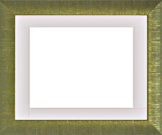 樹脂製デッサン額 SF300 金箔色フレーム(マット・アクリル付) 大全紙