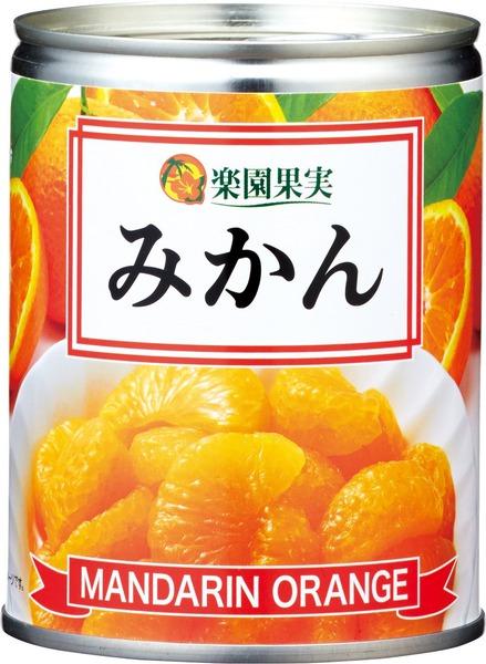 再販ご予約限定送料無料 ライトシロップでフレッシュパックしました セール特別価格 産地:中国産 〇楽園果実みかん缶 350g