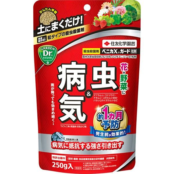 土にまくだけで病害虫を予防できる 住友化学園芸 殺虫・殺菌剤 ベニカXガード粒剤 250g × 32個 ケース販売