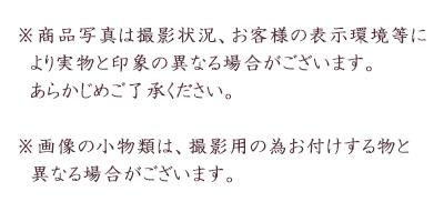 レンタル 晴れやかブルーが可愛い袴セット 往復送料無料 小物一式つき7歳女の子 貸衣装 卒園式 袴 青 ジュニア袴QtsdxhrC