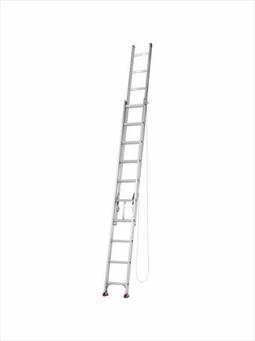 メーカー直送【法人様限定】 アルインコ(ALINCO)はしご 2連はしご [CX-60DE] 全長 5.93m 詳細は商品説明をご確認ください