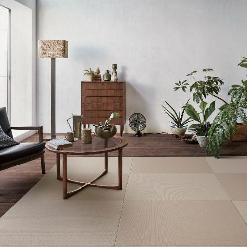 大建 彩園 ここち和座 置き敷きタイプ3枚入 ベージュ[YQ5104-3] DAIKEN