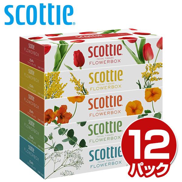 スコッティ (SCOTTIE) ティッシュペーパー フラワーボックス 320枚(160組)5箱×12パック(60箱) 41270 ティシュペーパー まとめ買い ケース販売 日用品 日本製紙クレシア