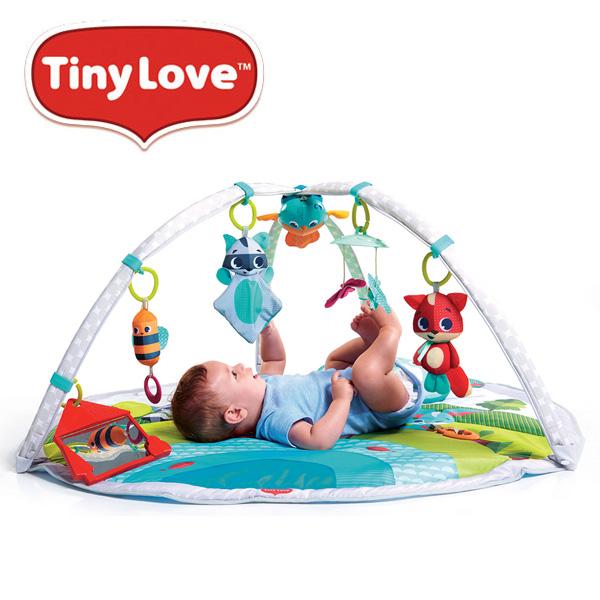 TinyLove(タイニーラブ) Meadow Days(メドウデイズ) ダイナミック・ジミニー Ni-5090066001 ベビージム プレイマット おもちゃ プレイグラウンド グラウンドジム 出産祝い 赤ちゃん 日本育児 【送料無料】