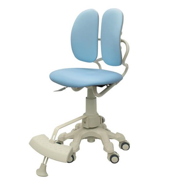 DRシリーズ 学習椅子 DR-289WG SLB パステルブルー学童椅子 学習チェア 学習イス キッズチェア 子供用 チェアー DUOREST(デュオレスト) 【送料無料】