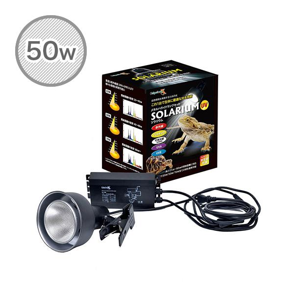 ソラリウム 50Wセット (メタルハライドランプ+共通安定器+専用ソケット) 50W ランプ 交換球 ソケットセット ゼンスイ 【送料無料】