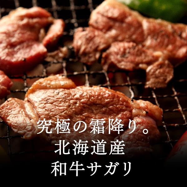 日本牛肉脂肪酸 (裙子牛排) 200 g = (烤烤的肉肉烧烤 BBQ 烤具套)