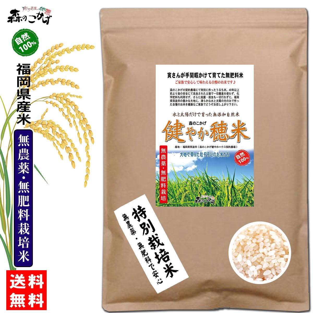 自然栽培米 健やか穂米 セール商品 1kg 送料無料 森のこかげ 1kg 白米 玄米 予約販売 無農薬 無肥料米