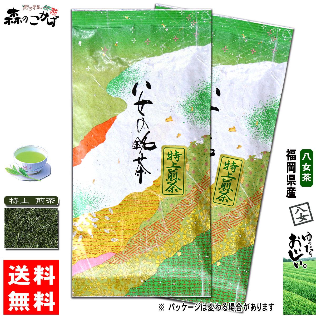 信頼 特上 煎茶 100g×2個セット Y1 送料無料 福岡県 超安い ≪八女茶≫ 健やかハウス 緑茶 やめちゃ 森のこかげ せんちゃ とくじょう 茶葉