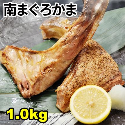 まぐろカマ1.0kg 高級ミナミマグロのかま【同梱おすすめ】かま焼き/かま煮付け/カマトロ/rdc/がってん/同梱