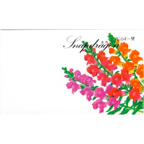 名入れ 花の種子 金魚草