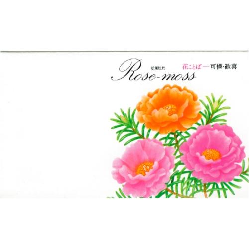名入れ 花の種子 松葉牡丹