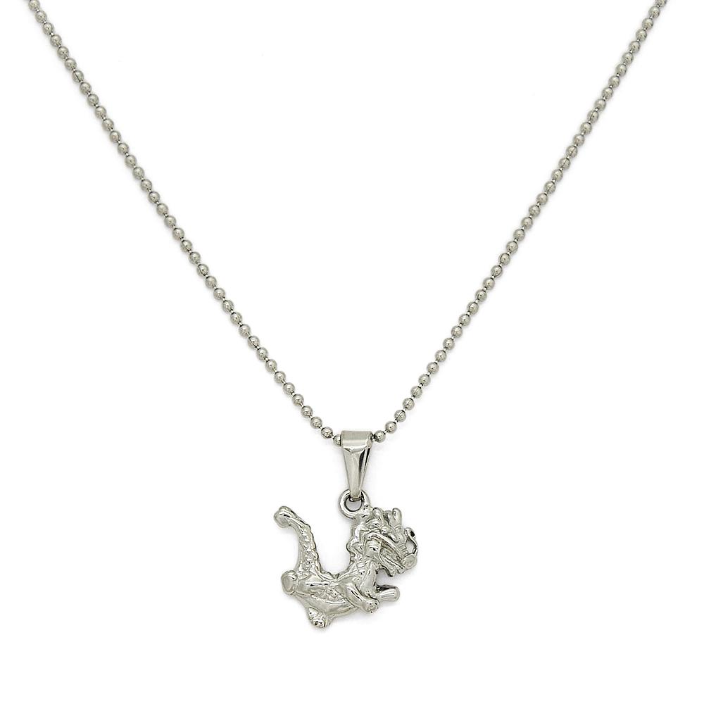 金属アレルギーに強い 医療用ステンレス製のペンダントヘッド ペンダントトップ サージカルステンレス ちびっ子ドラゴンモチーフのペンダント ネックレスチェーン付き アウトレット 龍 りゅう レディース 初回限定 医療用ステンレス 竜 リュウ メンズ アクセサリー