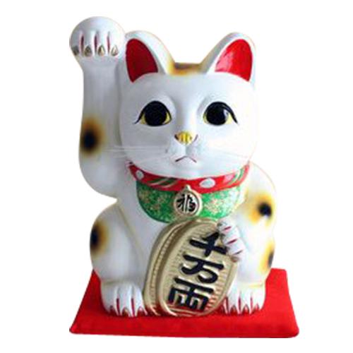 開店お祝い 周年お祝い の贈り物にとっても喜ばれます 送料無料 日本製 好評 招き猫 お祝 新登場 開店 御祝10号 縁起物 白