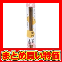 【実のなる木箸 柿 (1F19-4) ※セット販売(100点入)】2017年 販促品・ノベルティグッズ