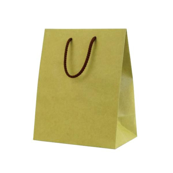 T-2 カラークラフト 紙袋 江戸打紐 200×120×250mm 100枚 抹茶 1055 [ラッピング不可][代引不可][同梱不可]