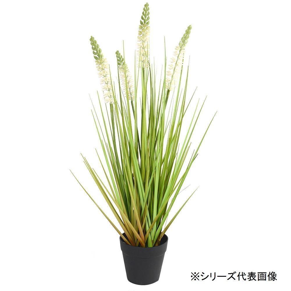 人工観葉植物 ラベンダーグラス L 約153cm 159021000 [ラッピング不可][代引不可][同梱不可]