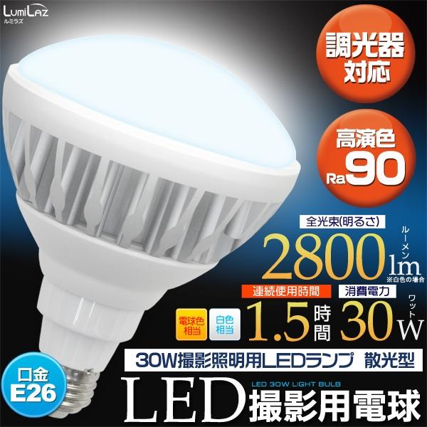 [LED電球・蛍光灯] 30W撮影照明用LEDランプ 散光型 [キャンセル・変更・返品不可]